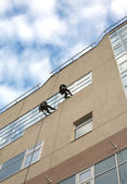 Industrial climbers washes windows in a high office building — Stock Photo