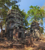 SIEM REAP, CAMBODIA. December 16, 2011.Ta Prohm, ancient temples in the jungle — Foto de Stock