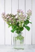 Sage bouquet — Stock Photo