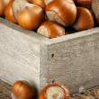 Hazelnuts in wooden box — Stock Photo #54433355