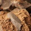 Cocoa mass and cocoa powder — Stock Photo #58994953