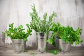 Galvanized bucket with greens — Stock Photo