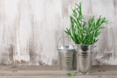Galvanized bucket with rosemary — Stock Photo