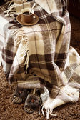 Comfortabele stilleven — Stockfoto
