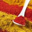 Assorted powder spices — Stock Photo #76469229