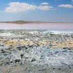 ������, ������: Koyashskoye salt lake