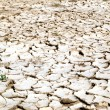 Closeup of dry cracked earth background, clay desert texture — Stock Photo #55725103