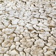 Closeup of dry cracked earth background, clay desert texture — Stock Photo #55725119