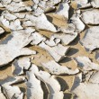 Closeup of dry cracked earth background, clay desert texture — Stock Photo #55725129