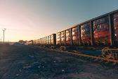 Freight train goods wagons at sunrise — Stockfoto