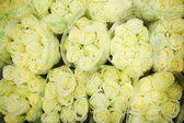Зеленых роз на оптовом рынке цветы — Стоковое фото