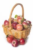 Basket with apples isolated on a white background — Foto Stock