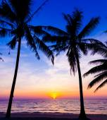 Sunset on the beach.  Sunset over the tropical beach — Stock Photo