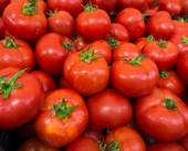 Red tomatoes background.  Group of tomatoes  — Stock Photo