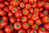 Red tomatoes at the market. Fresh ripe tomatoes  — Stock Photo