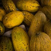 Melons at the market. — Stock Photo