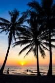 Stranden i solnedgång — Stockfoto