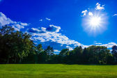 Beautiful green field — Stock Photo