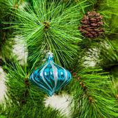 Christmas ball on fir branches — Stock Photo
