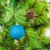 Blue ball on fir branches — Stock Photo