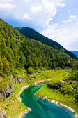 Mountain lake in forest — Stock Photo