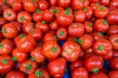 Red tomatoes in market — 图库照片