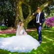 Bride and groom posing in a park — Stock Photo #58729167