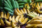 Bunches of bananas at market — Stock Photo