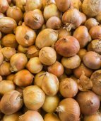 Unshelled fresh onions — Stock Photo