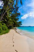 Tropical paradise beach — Stock Photo