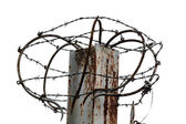 Barbed Wire in prison — Stock Photo
