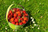 Sweet Strawberries in a basket. — Stock Photo