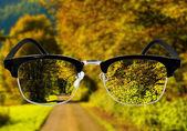 View on park through  glasses. — Stock Photo