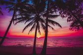 Belo pôr do sol na praia. — Fotografia Stock