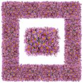 Square pink floral frame   — Stock Photo