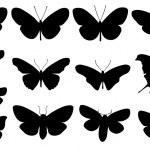 Butterflies — Stock Vector #64456845