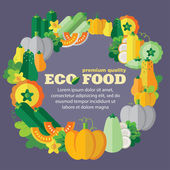 Eco food (vegetables, pumpkin family) — Stock Vector
