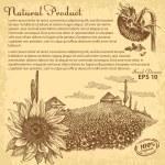 Hand drawn sunflowers — Stock Vector #66236097