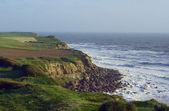 Cliff coast — Stock Photo