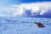 冬を小屋します。 — ストック写真
