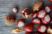 Castanhas na mesa de madeira — Fotografia Stock