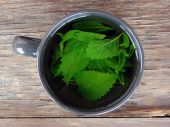 Tea with mint on wooden table — Stock Photo