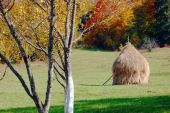 Autumn landscape with haystack — Stock Photo