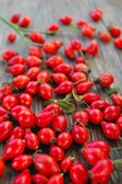 Ripe rose hip berries — Stock Photo