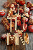 Autumn background with closeup of chestnuts on wooden table — Stock Photo