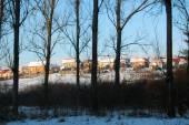 Winter rural landscape — Stock Photo