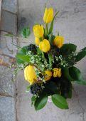 Bouquet of yellow tulips — Stock Photo