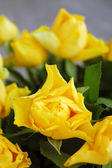 Bouquet of yellow roses — Stock Photo