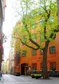 Street view of Stockholm — Foto de Stock