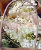 Elderflowers in papieren zakken — Stockfoto